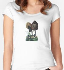 antique typographic vintage mushrooms toadstools Women's Fitted Scoop T-Shirt