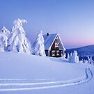 A CABIN WITH SNOW & TREES ALL AROUND  by MsLiz