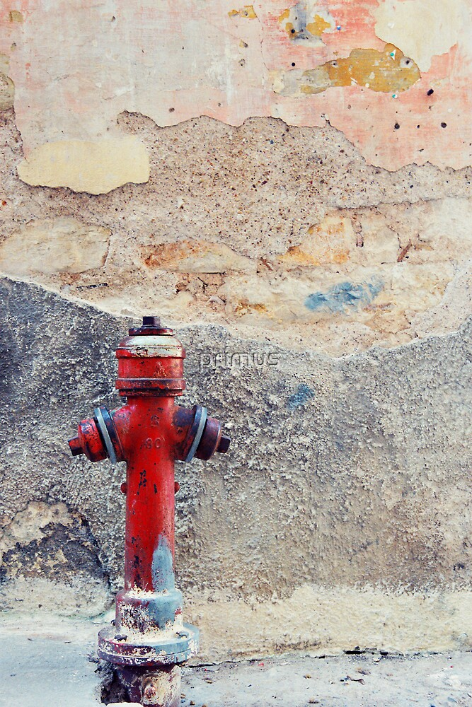 Fire Hydrant by primus