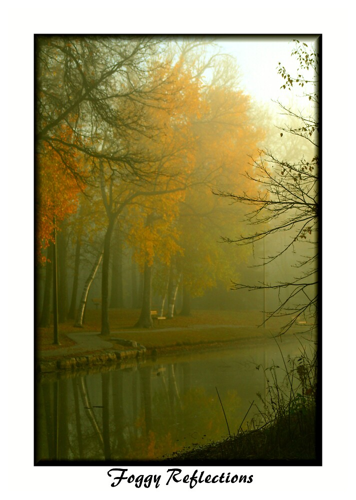 Foggy Reflections by Madeline M  Allen