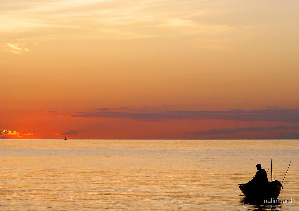 Fisherman At Sunset by nalinmard