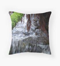 Bubbly Brook Throw Pillow