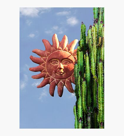 Sun Behind The Cactus  Photographic Print