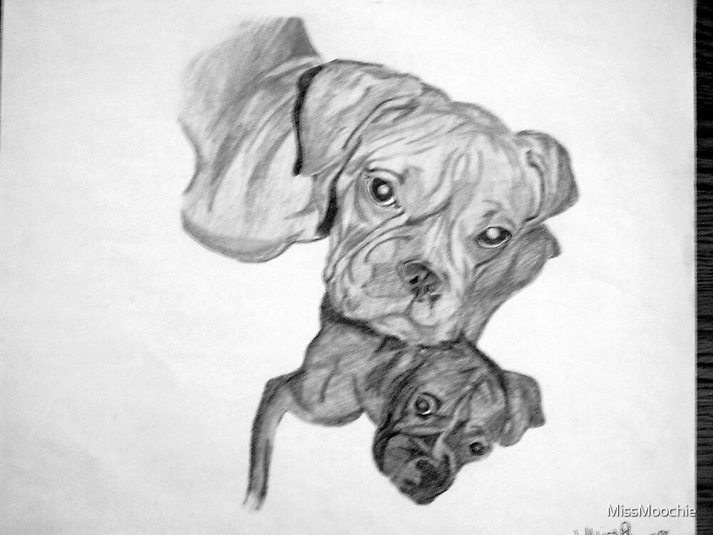 Boxers by MissMoochie