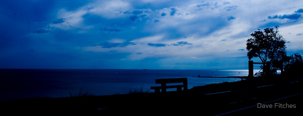 The bench by the bay by Dave Fitches