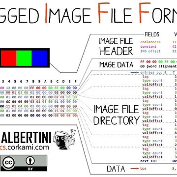 .TIFF : Tagged Image File Format (little endian) by Ange4771