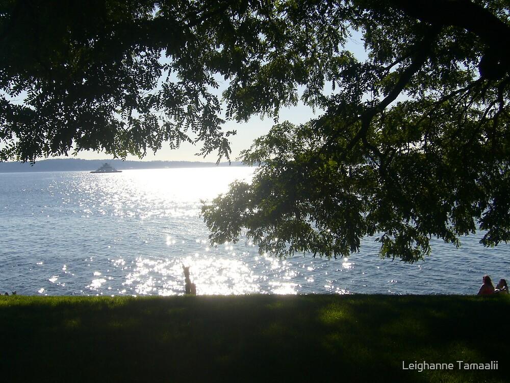 Beautiful Sunnyside Beach by Leighanne Tamaalii