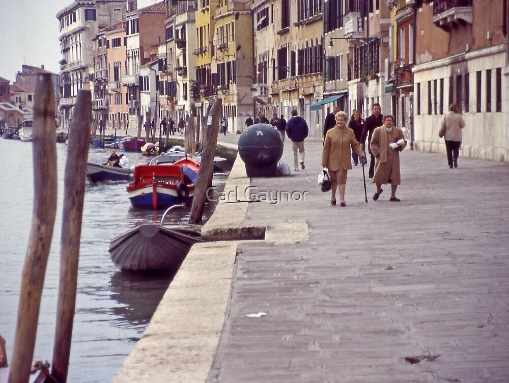 Venice - Day to Day   by Carl Gaynor