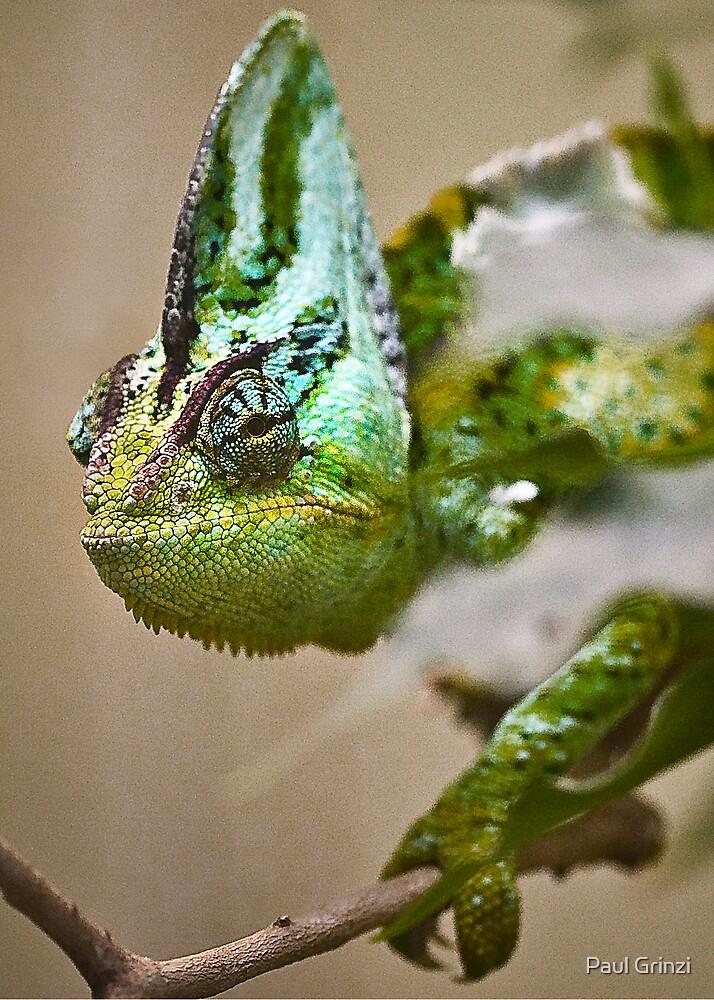 It's not easy being green by Paul Grinzi