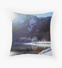 Dazzled Throw Pillow