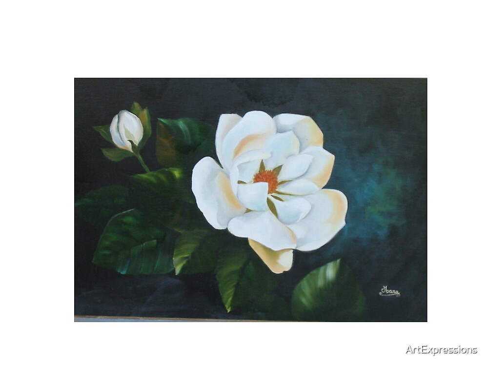 My First Magnolia by ArtExpressions