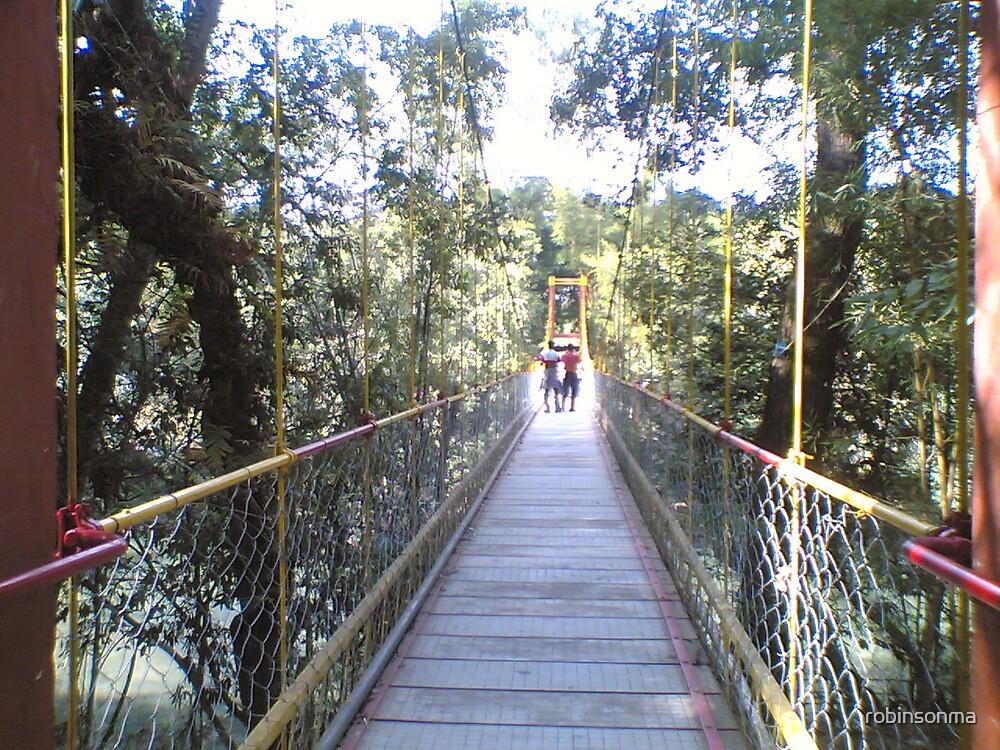 Foot Path Suspension Bridge by robinsonma