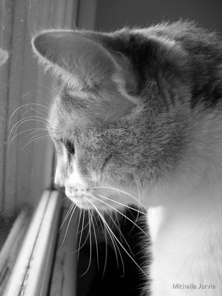 Looking Out by Michelle Jarvie