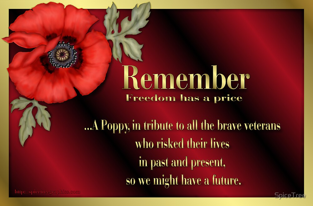 Remember Veterans Poppy by SpiceTree