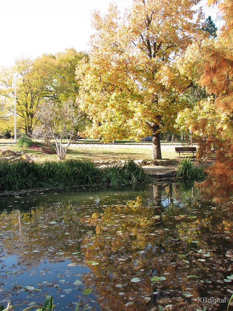 Autumn Lake by KBdigital