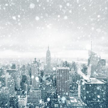 Snowfall in New York City by palinchak