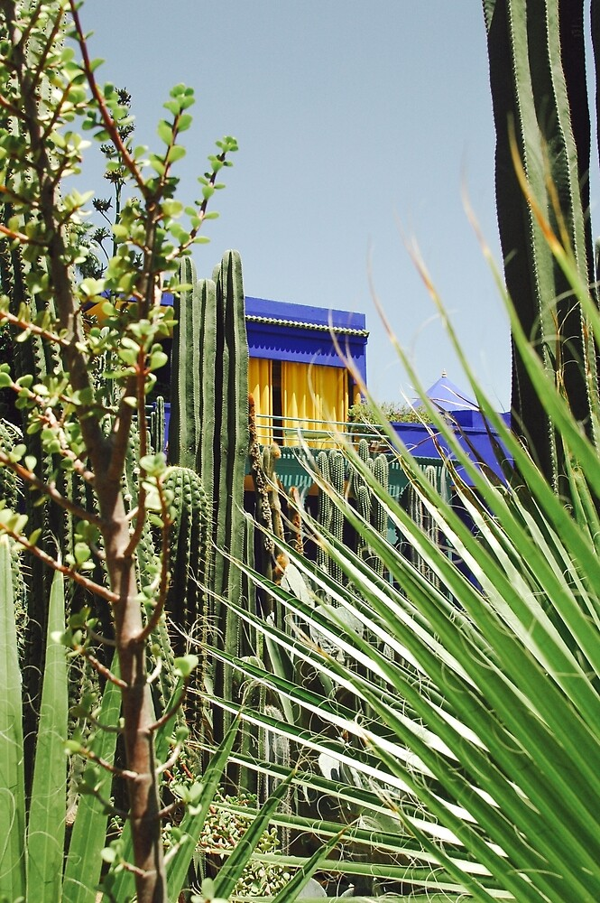 Majorelle by Christa Moreau