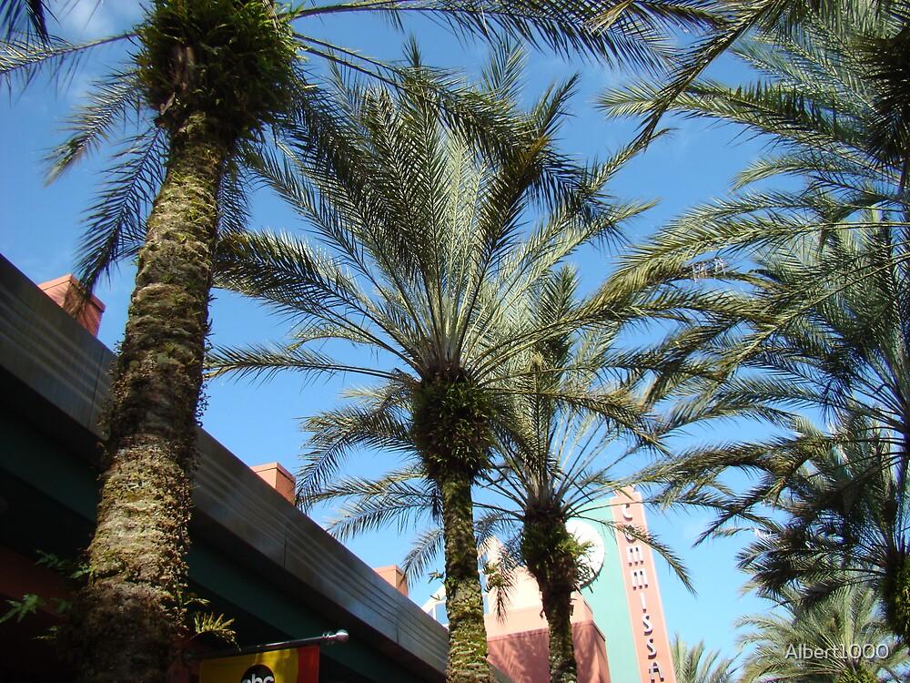 Palm tree by Albert1000