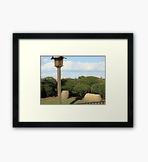 Florida greenery Framed Print