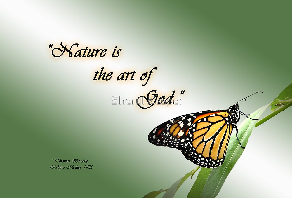 Nature Is The Art Of God Von Sheryl Kasper Redbubble