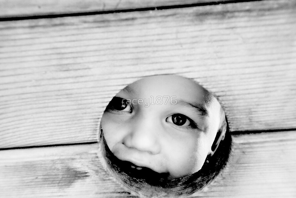 ...through the little wooden hole by racey1876