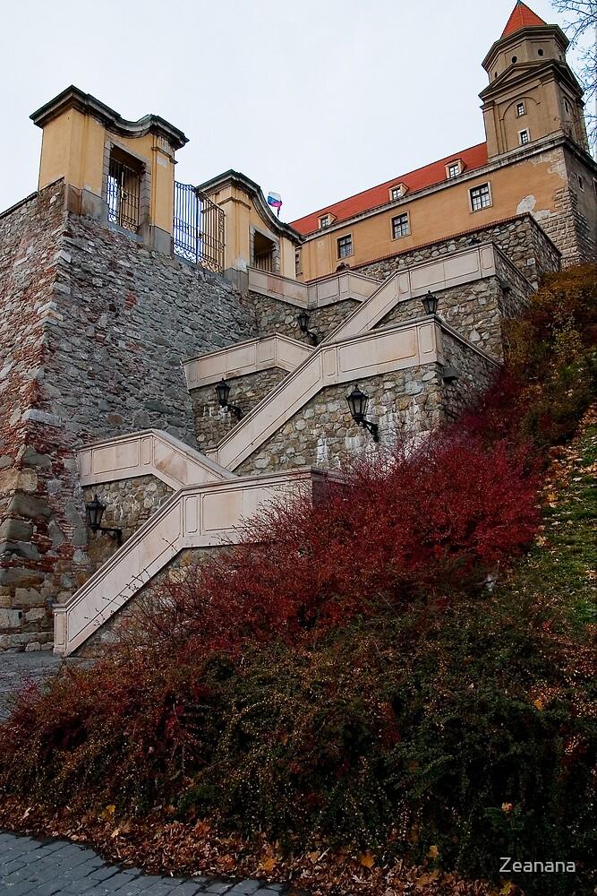 The Castle of Bratislava by Zeanana