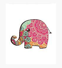 Elephant Graphic Tshirt Photographic Print