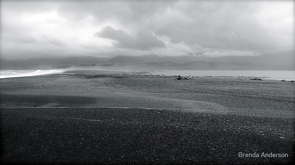 between ocean and lake by Brenda Anderson