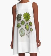 Succulents A-Line Dress