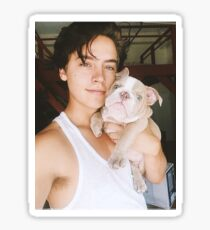Riverdale - Cole Sprouse Sticker
