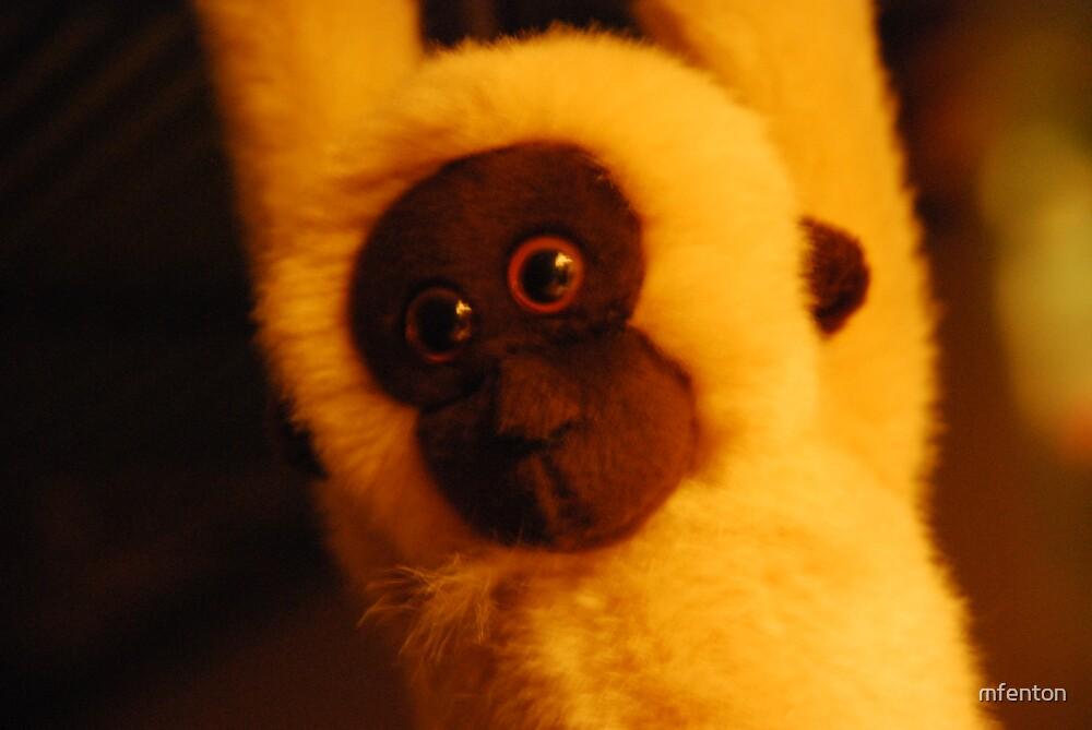 Monkey by mfenton