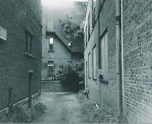 the alley way by stan