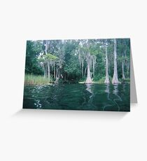 Nice Day on The River in Dunnellon, FL Greeting Card