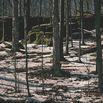 Nelson's Ledges by RickWalker
