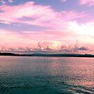 Pink Paradise Skyline by Virginia McGowan
