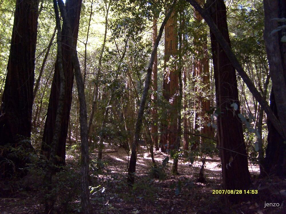 big trees by jenzo