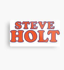 Steve Holt Metal Print