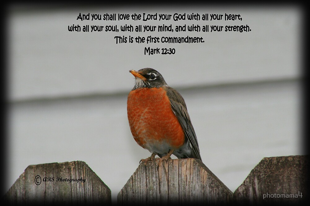 Love the Lord by photomama4
