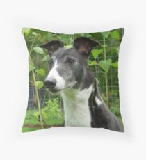 Greyhound Handsome Throw Pillow
