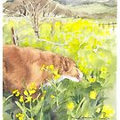 retriever in a vineyard watercolor by Mike Theuer