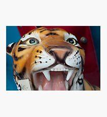 Ceramic Tiger Photographic Print