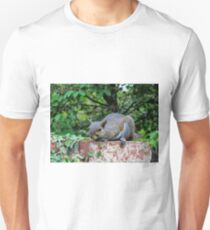 Ready To Pounce Unisex T-Shirt