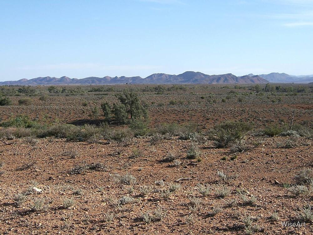 Flinder's Ranges SA by WiseArt