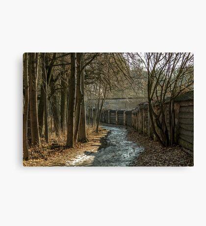 Road near Monastery Canvas Print