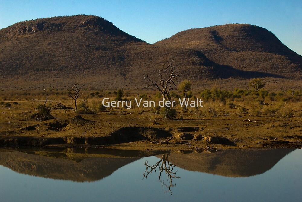 Tswene Tswene Reflection by Gerry Van der Walt