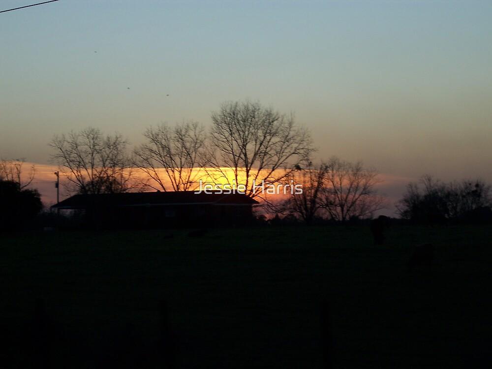 Darkened Sunset by Jessie Harris