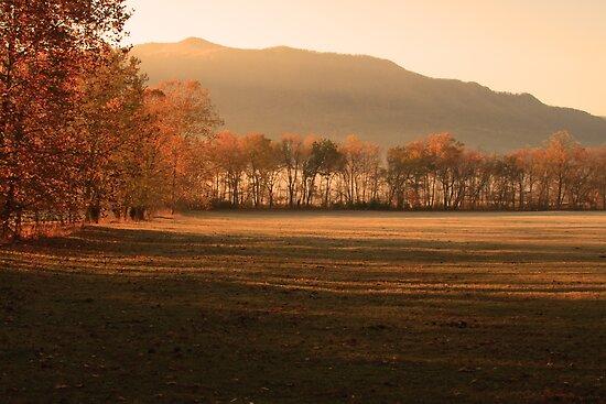 Morning Has Broken by Gary L   Suddath