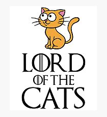Lord Cats Photographic Print