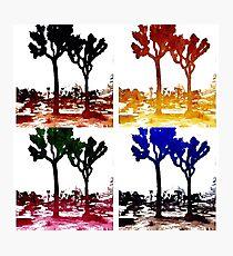 Joshua Tree Warhol Photographic Print