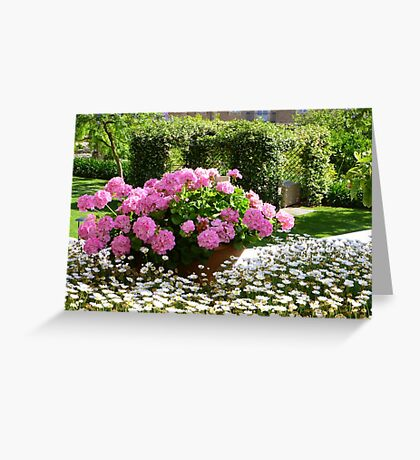 A Pot Of Pink Perfection..........................Mallorca Greeting Card